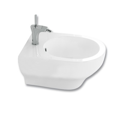 Clear Wall Hung Bidet