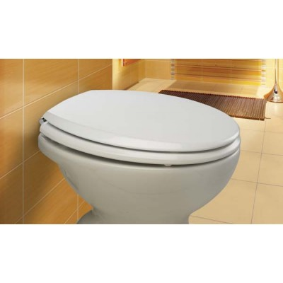 Canyon Toilet Seat
